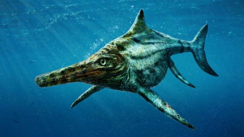 New species of extinct reptile found