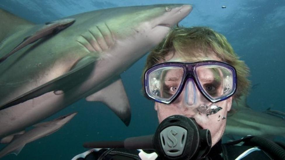 The man taking selfies with sharks