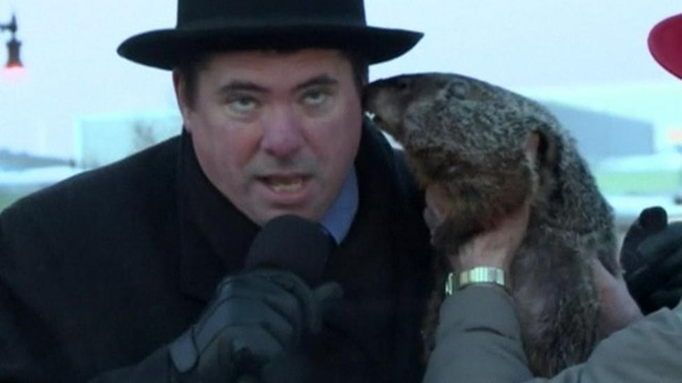Town's mayor gets groundhog bite