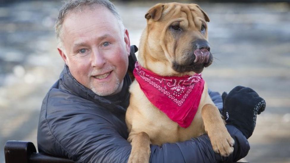 New owner for abandoned dog Kai