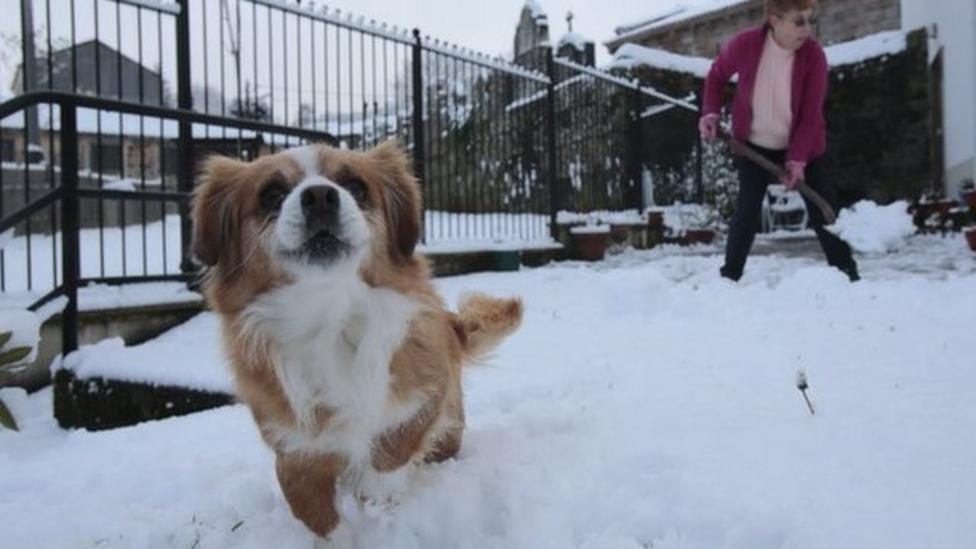 Record snow fall across Europe