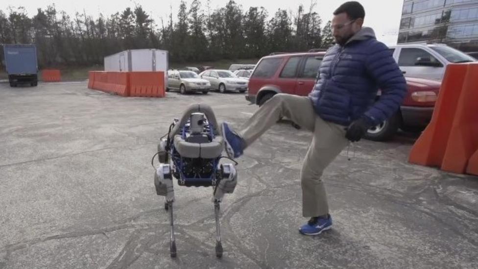 Meet Spot the robot 'dog'