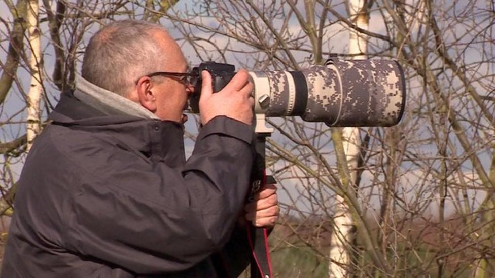 'How I snapped weasel on bird photo'