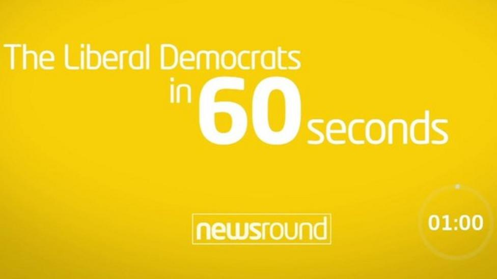 The Liberal Democrats in 60 seconds
