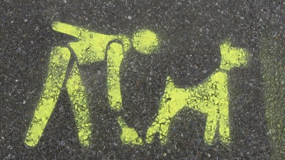 What do you think of dog poo?