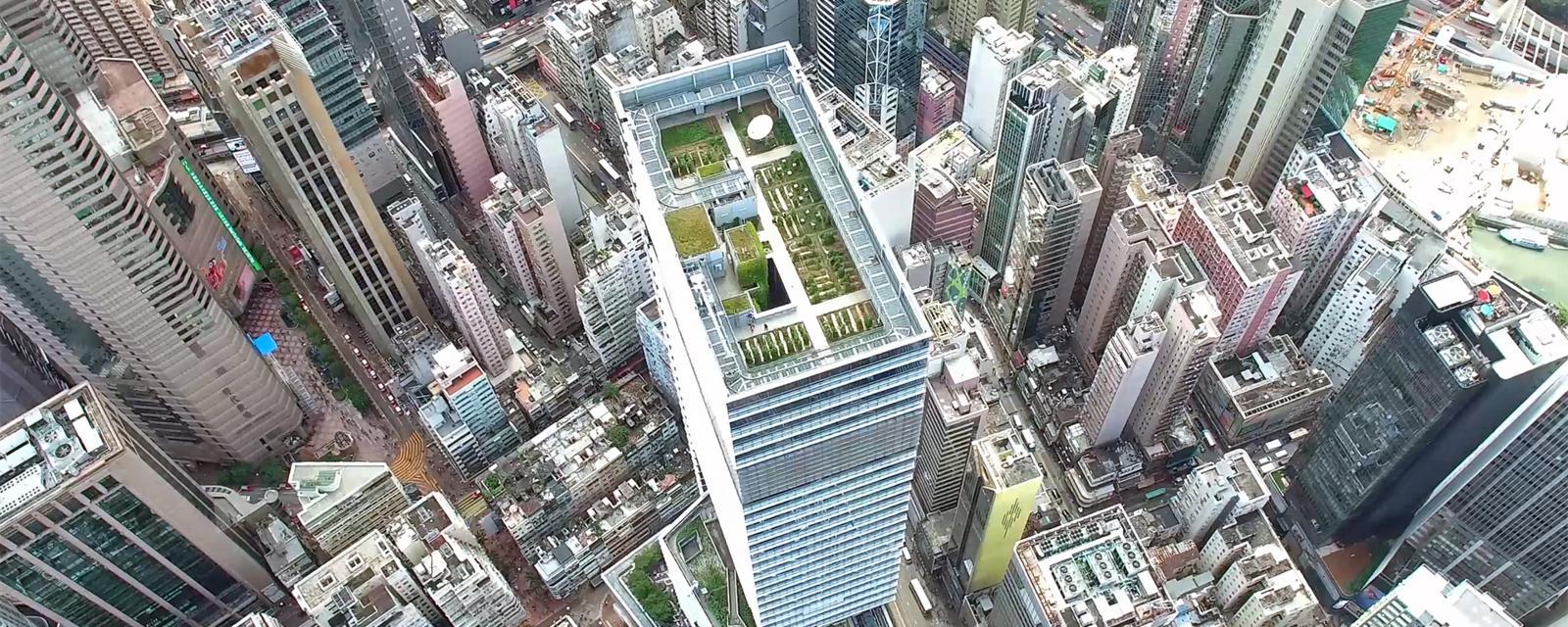A flight over Hong Kong's secret farms