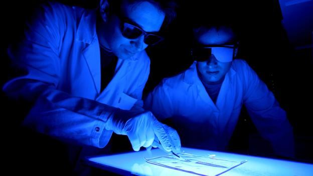 BBC - Future - Becoming biohackers: The experiments begin