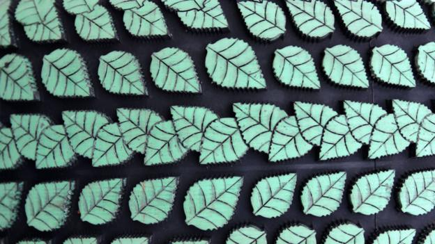 Artificial leaf hopes to power the world