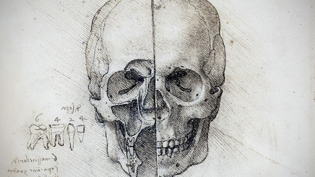BBC - Culture - Leonardo da Vinci's groundbreaking