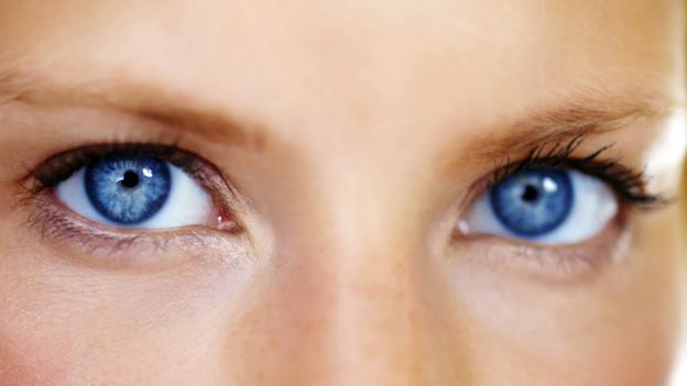 Evolution: Why do your eyes face forwards?