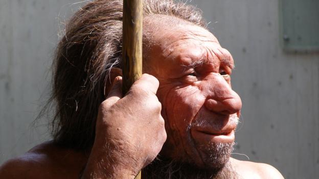 BBC - Earth - Human evolution was shaped by interbreeding
