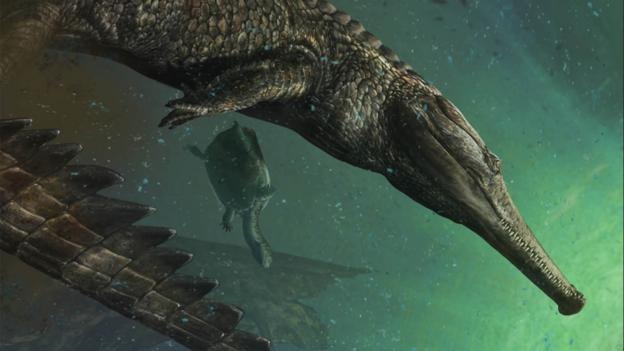 BBC - Earth - Found: an ancient crocodile as long as a bus