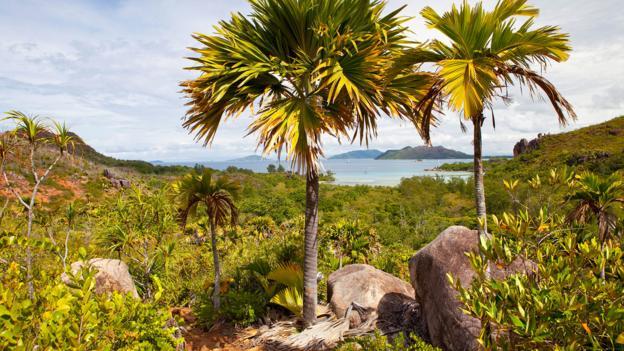 Bbc Travel The Real Life Garden Of Eden