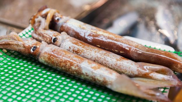 The mysterious case of Japan's 'dancing zombie squid'