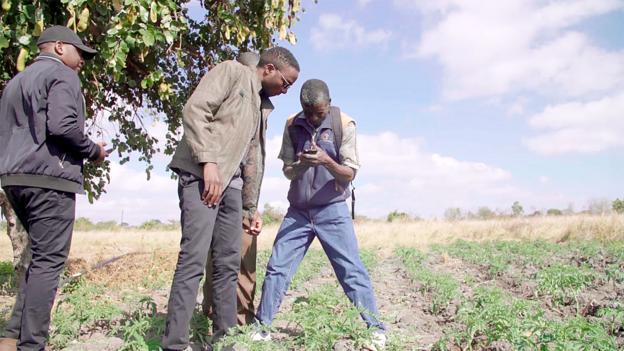 The Zambian agri-tech app making farming cool
