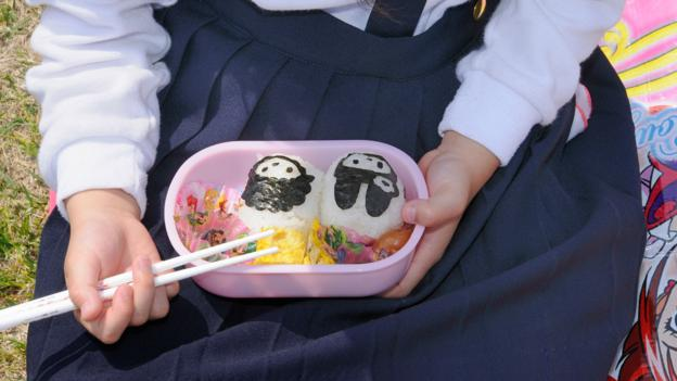 Lifting the lid on Japan's bento boxes