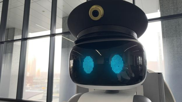What the world can learn from Japan's robots