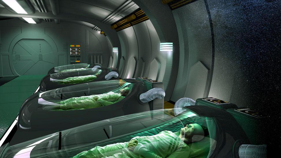 Human hibernation: Secrets behind the big sleep - BBC Future