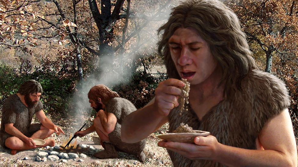 Earlier this year we saw the biggest study exploring whether we should follow a diet like cavepeople (Science Photo Library)