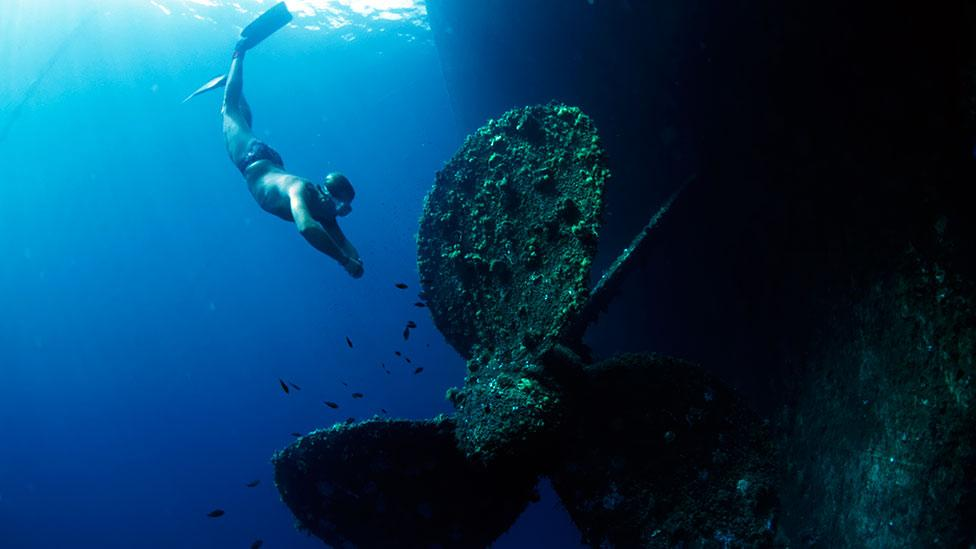 A diver approaches the wreck of a sunken ship. Freediving has been used in underwater salvage for thousands of years. (Science Photo Library)