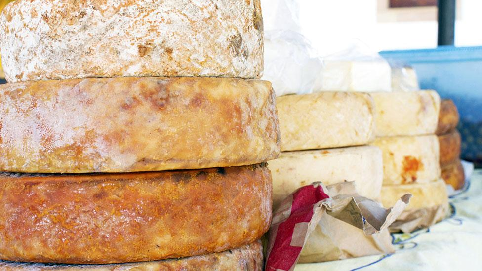 For cheese lovers there is a huge, bacteria-infested world out there just bursting with flavour (Thinkstock)