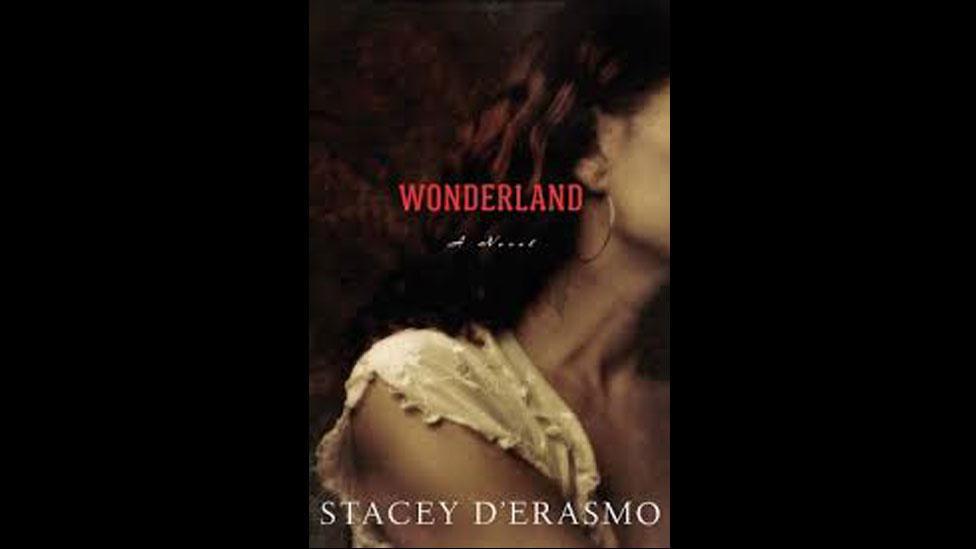5. Stacey D'Erasmo, Wonderland