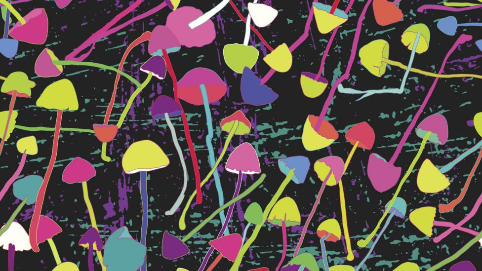 The drug is the same as found in magic mushrooms, but they are not administered this way (Credit: Thinkstock)