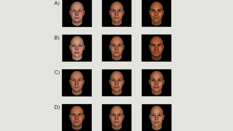 These faces show less or more (A) competence, (B) dominance, (C) extroversion, (D) trustworthiness (Credit: Christopher Olivola, Friederike Funk, Alexander Todorov)
