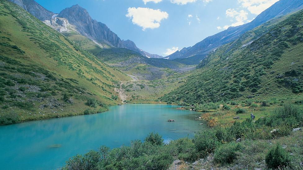Kazakhstan's remote interior is no longer off-limits to Western horticulturists (Credit: Getty Images)