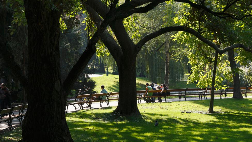 One of Vienna's many green spaces dotted throughout the city (Credit: Martin Siepmann/ Alamy)