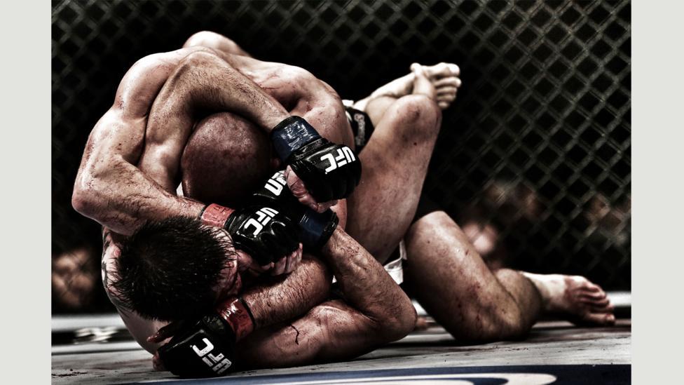 Mixed Martial Arts Fight, UFC 154, Montreal, Canada, 2012 (Credit: Franck Seguin)