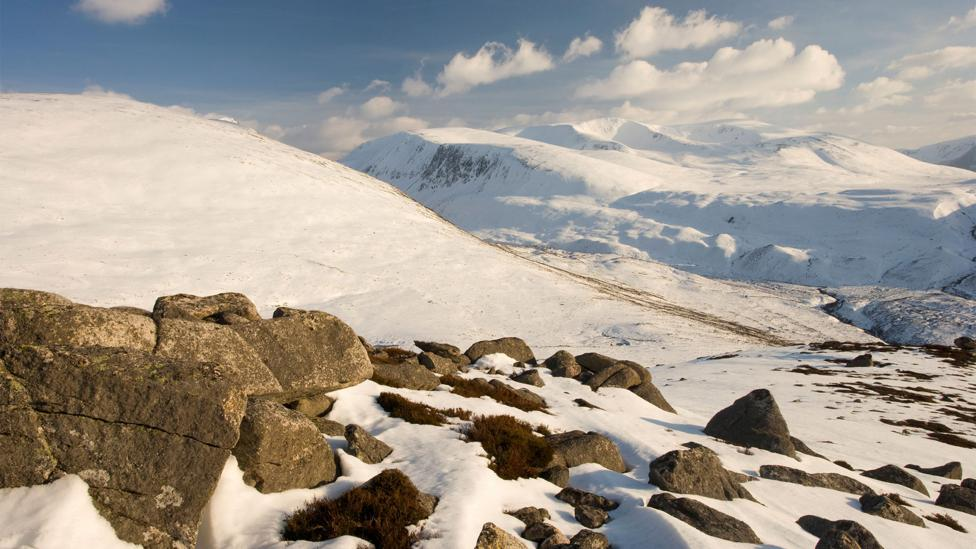 Scotland's Cairngorms national park shares many features with Norway's landscape (Credit: Alamy)