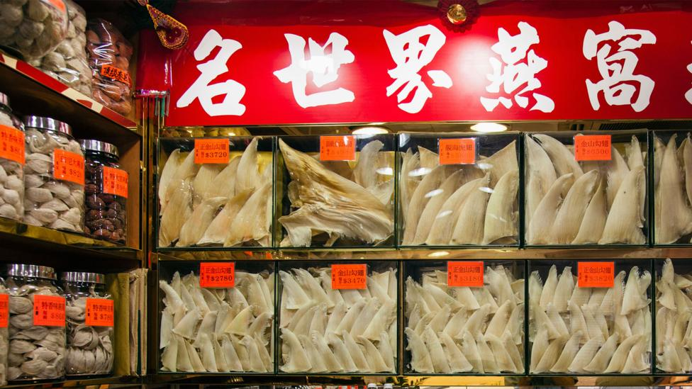 Shelves of dried shark fins are common in Hong Kong's Sheung Wan district - but it can be very hard to tell whether the goods come from protected species (Credit: Alamy)