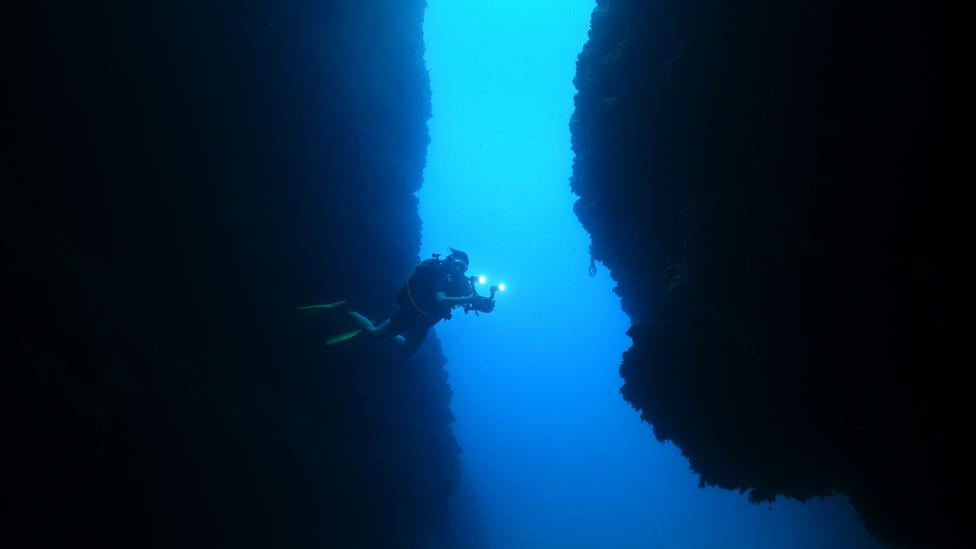 Diver in underwater canyon (Credit: iStock)