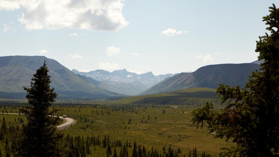 At Denali National Park & Preserve, warming has begun to affect wildlife (Credit: Anthony Rhoades)
