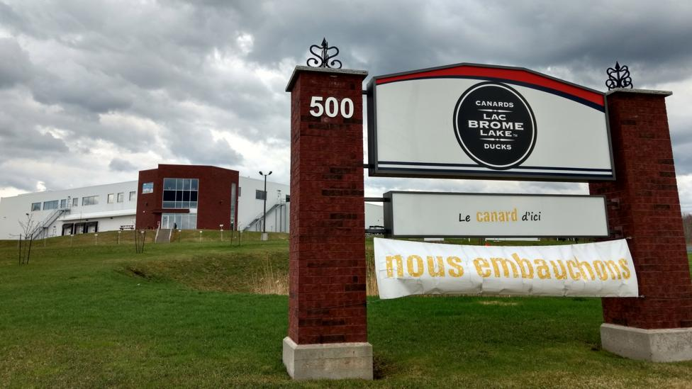 The sign outside Canards du Lac Brome facility says they're hiring (Credit: Lorcan Archer)