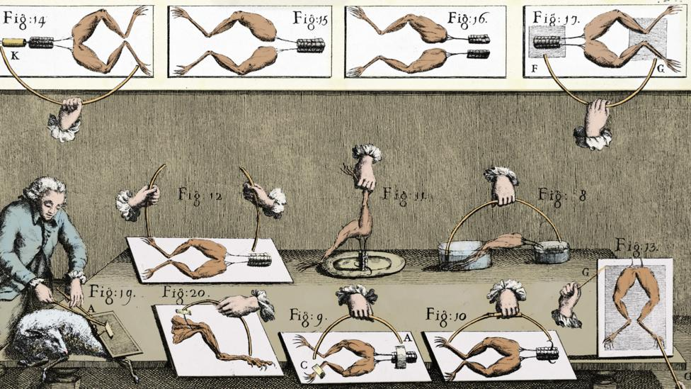 Luigi Galvani's experiments using electricity to reanimate dead frogs was possibly one of the inspirations for the novel (Credit: Alamy)