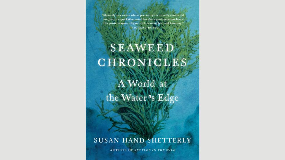 Susan Hand Shetterly, Seaweed Chronicles