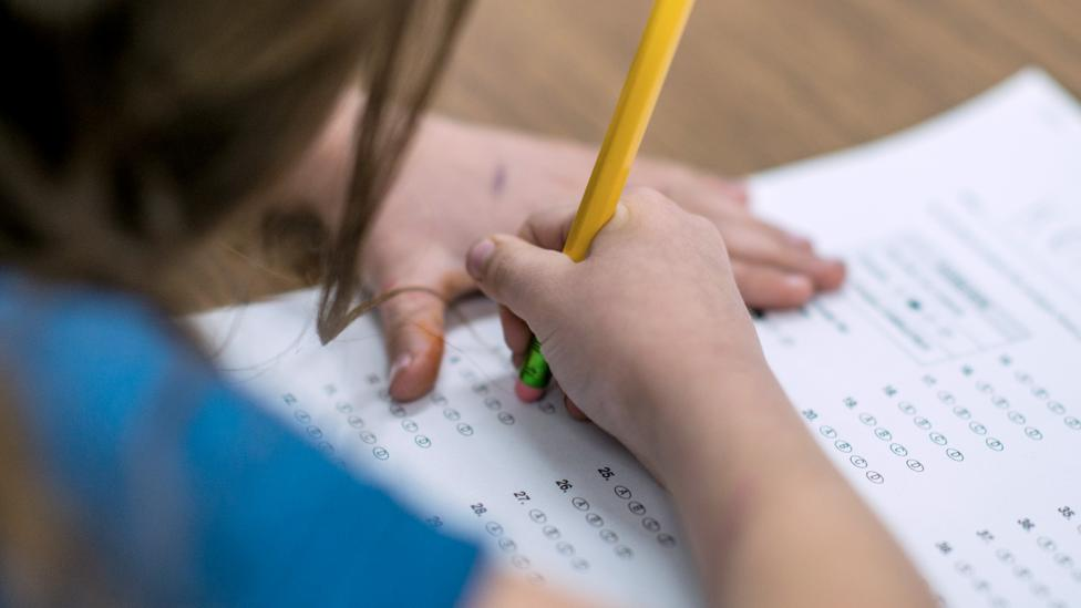 Study Shows Kids Test Scores Drop When >> How Much Is Academic Achievement Shaped By Genes Bbc Future