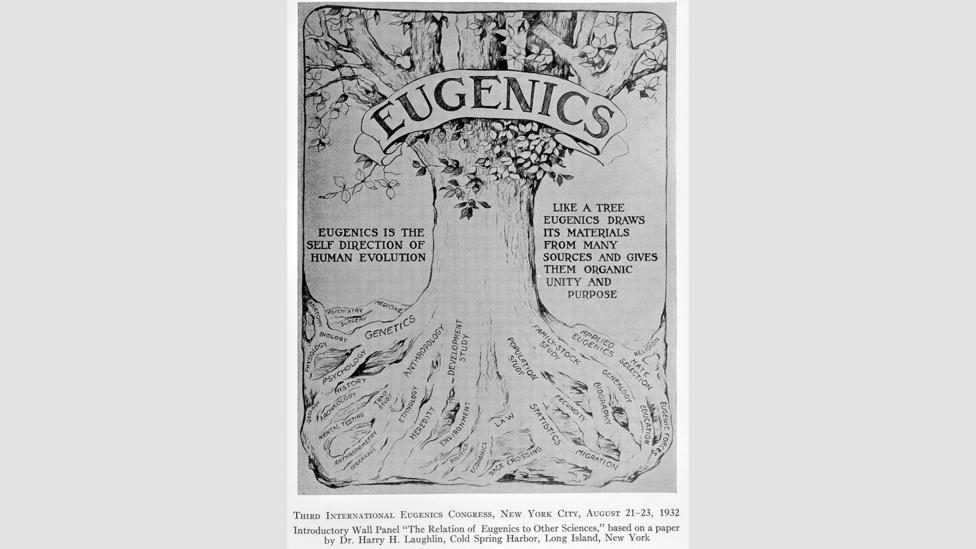 The world's first eugenics law was passed in Indiana in 1907, when the state required that institutionalised people be sterilised (Credit: Wellcome Collection)