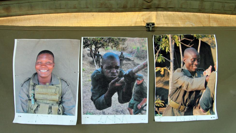 Today, motivational shots of the Akashinga rangers decorate the operations tent at Phundundu Wildlife Park (Credit: Rachel Nuwer)