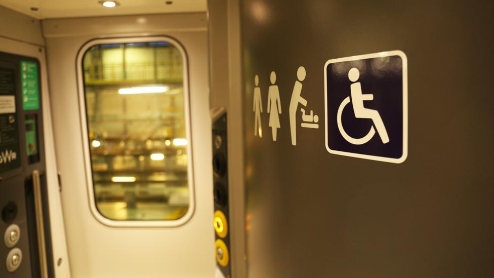 Some of the toilets are big enough for wheelchair users to use (Credit: Stephen Dowling)