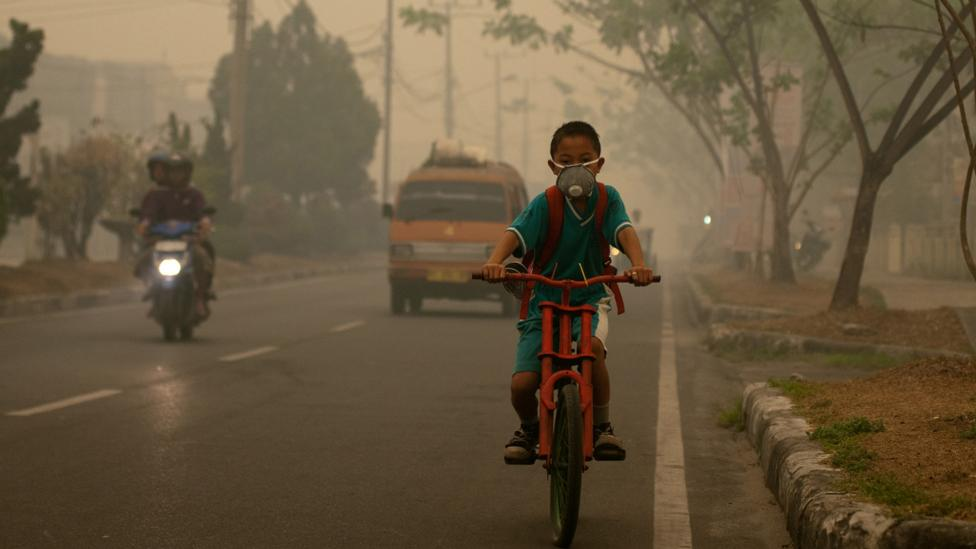 …compared to a photograph like this, which shows the local, human impact of pollution (Credit: Aulia Erlangga/CIFOR)