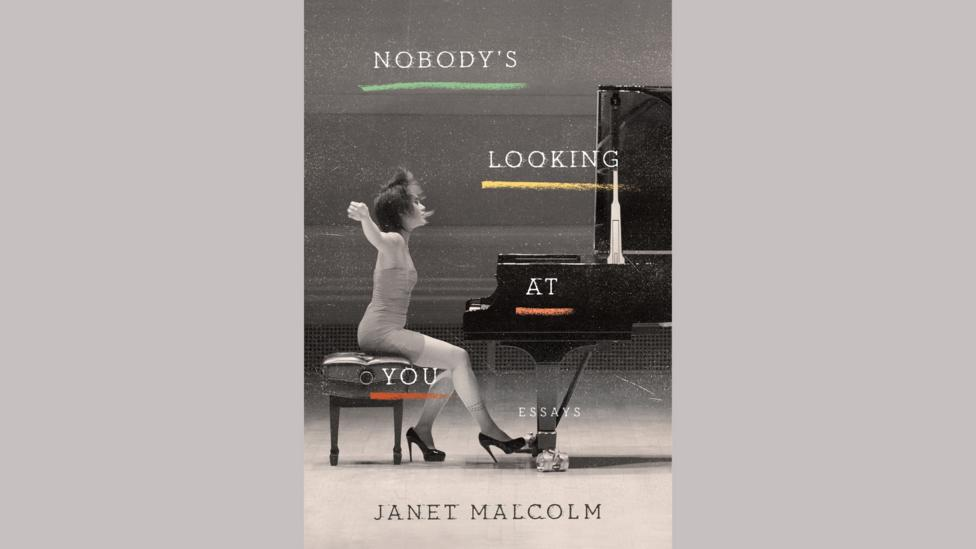 Janet Malcolm, Nobody's Looking at You