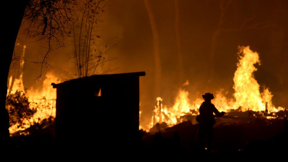 Creating physical barriers in the right place and breaks between sections of forest can help to reduce the spread of wildfires (Credit: Getty Images)