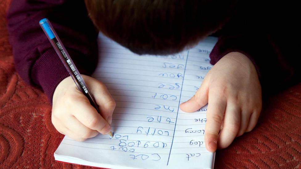 There are some who fear that as children learn to rely upon AI-powered smart writing systems, their vocabulary and spelling may suffer (Credit: Alamy)