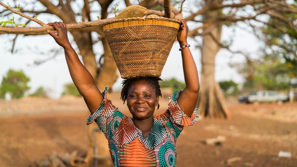The baobab harvest has given women in the villages of northern Ghana a new voice in their communities (Credit: Aduna)