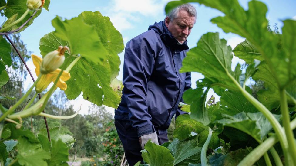 Gardener tends allotment at Children's Wood