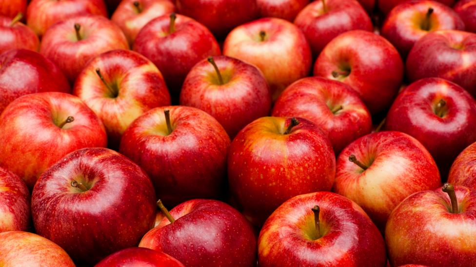 How climate change could kill the red apple - BBC Future