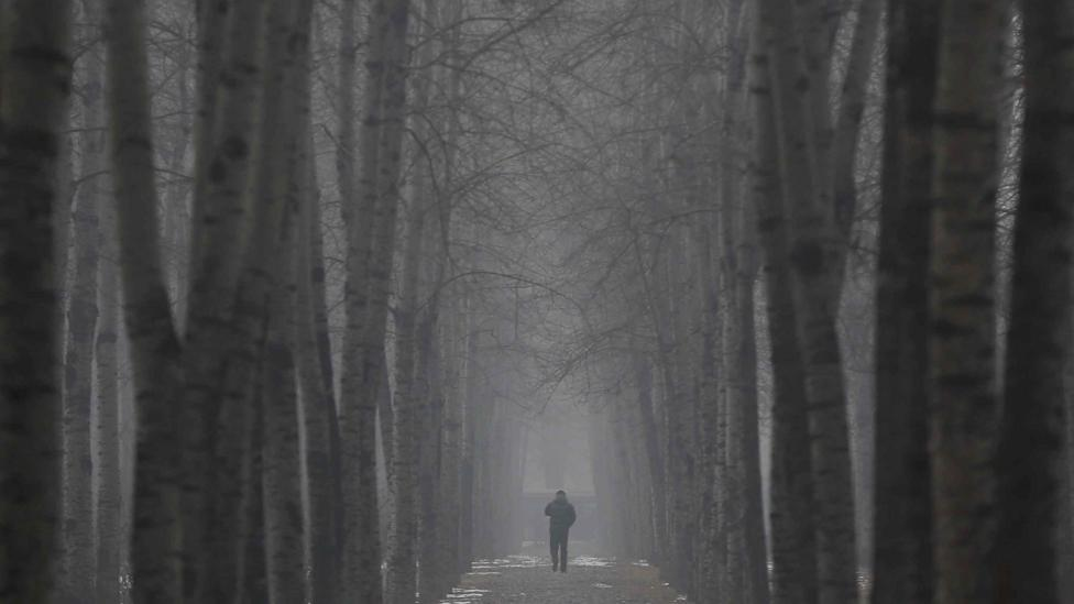 Air pollution in Beijing regularly exceeds 10 times the WHO recommended levels, but tree-planting schemes are being deployed in an attempt to cut pollution (Credit: Getty Images)